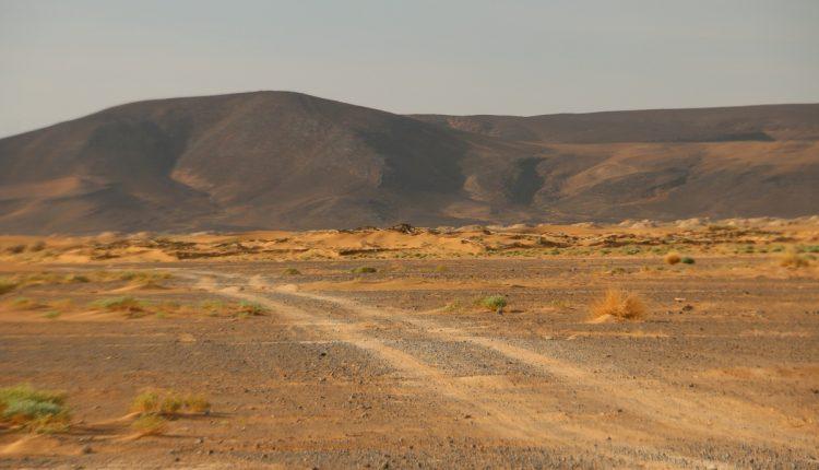 Nissan Navara Maroko029