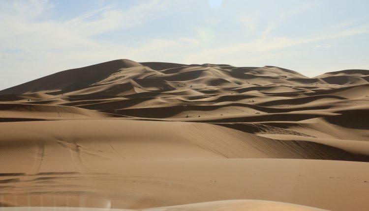 Nissan Navara Maroko101